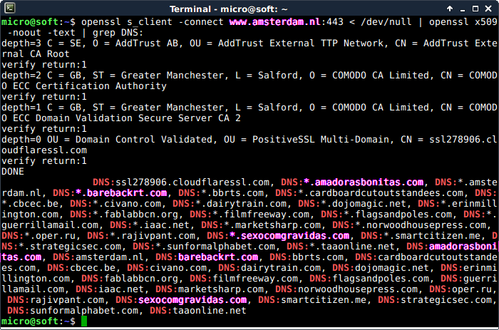 Screenshot of openssl s_client -connect www.amsterdam.nl:443